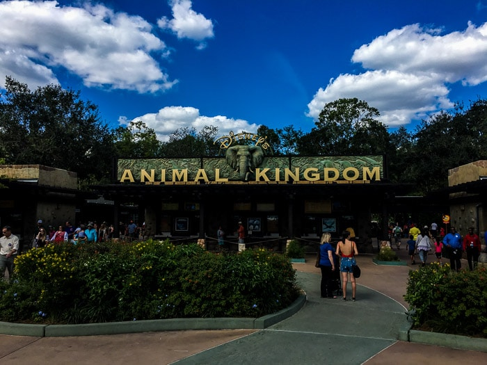 Disney World x Disneyland