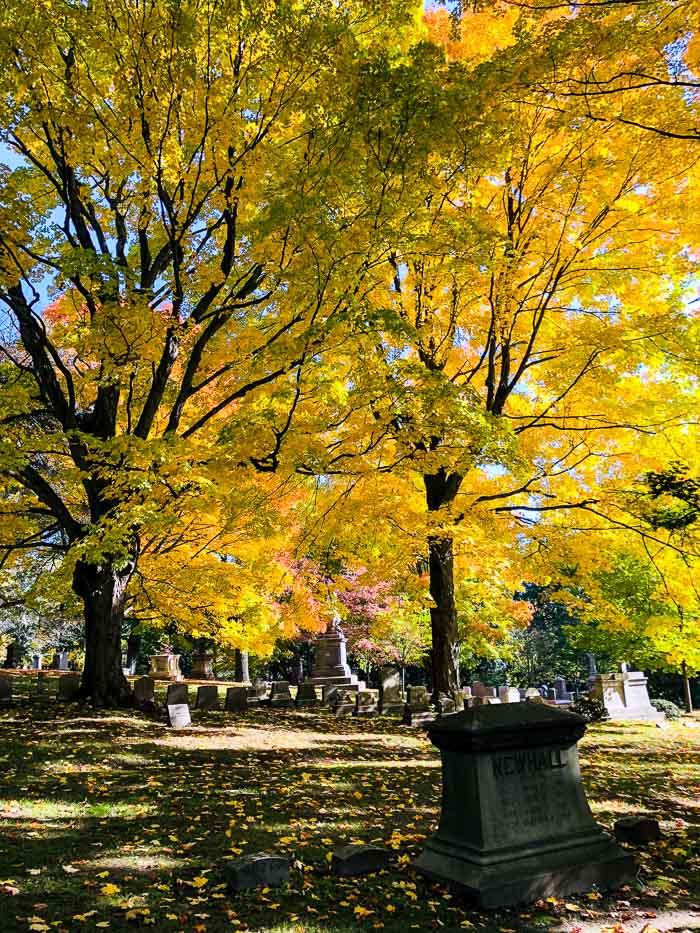 Mount Auburn Cemetery - Cambridge